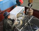 大通湖冬季�鱼开始